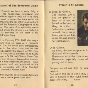 February 27, 2021: Feast of Saint Gabriel Possenti, Passionist-A reflection on the options we have to seek comfort and healing